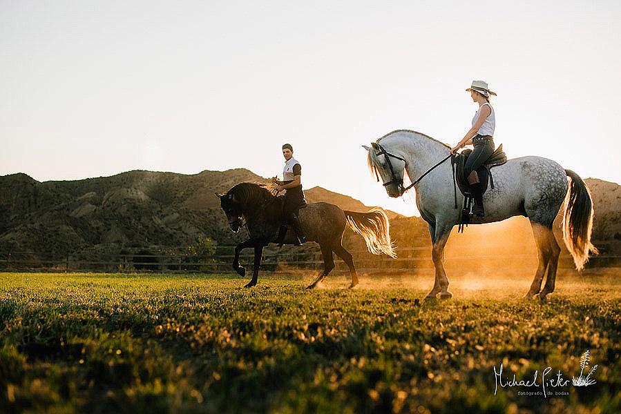 fotos con caballos