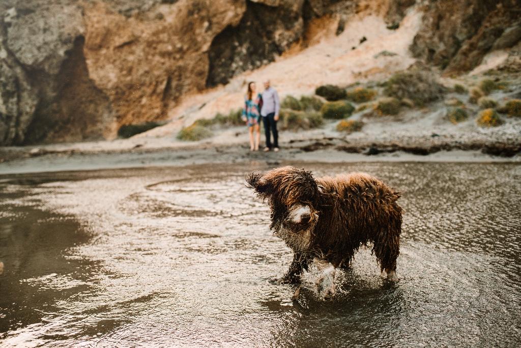 Fotos de boda Perros de Agua